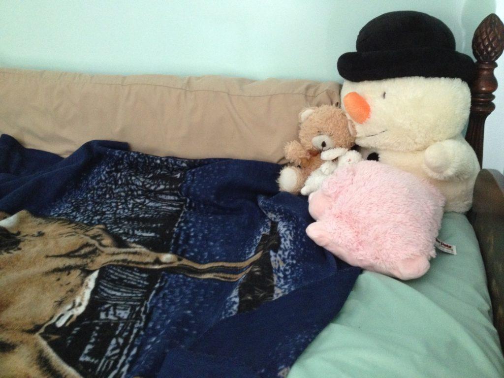 Fleece_blanket_cover