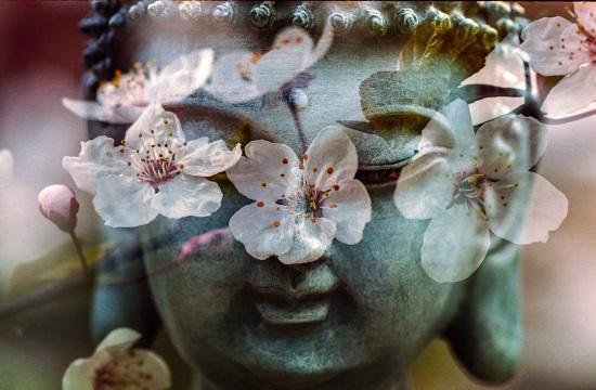 garden_buddha