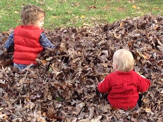 boys_leaf_pile